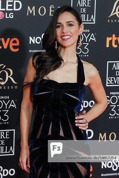 Cristina Brondo attends the Spanish Cinema awards Goya 33rd edition at FIBE attends 33rd Goya Cinema Awards 2019 at Palacio de Congresos y Exposiciones FIBES on February 3  2019 in Sevilla  Spain.02/02/2019.