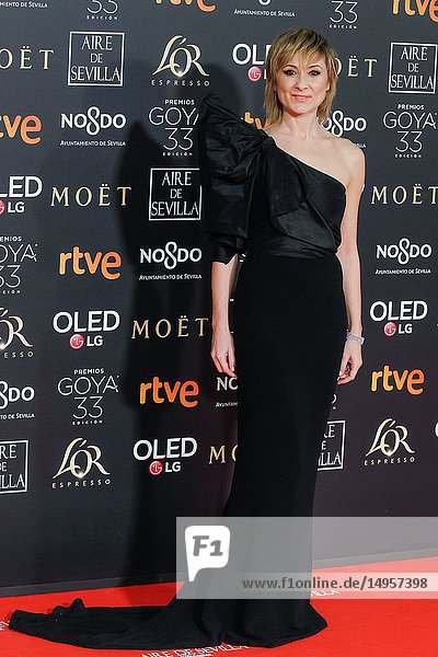 Nathalie Poza attends the Spanish Cinema awards Goya 33rd edition at FIBE attends 33rd Goya Cinema Awards 2019 at Palacio de Congresos y Exposiciones FIBES on February 3  2019 in Sevilla  Spain.02/02/2019.
