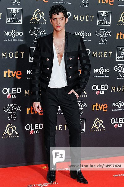 Eduardo Casanova attends the Spanish Cinema awards Goya 33rd edition at FIBE attends 33rd Goya Cinema Awards 2019 at Palacio de Congresos y Exposiciones FIBES on February 3  2019 in Sevilla  Spain.02/02/2019.