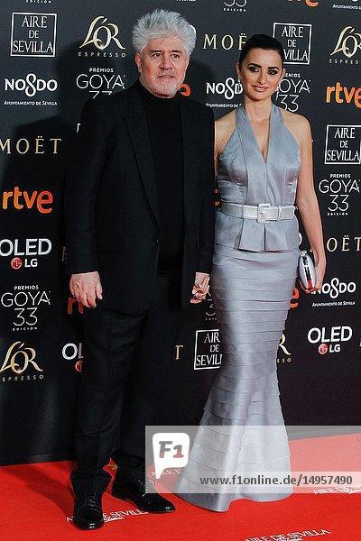 Pedro Almodovar and Penelope Cruz attends the Spanish Cinema awards Goya 33rd edition at FIBE attends 33rd Goya Cinema Awards 2019 at Palacio de Congresos y Exposiciones FIBES on February 3  2019 in Sevilla  Spain.02/02/2019.