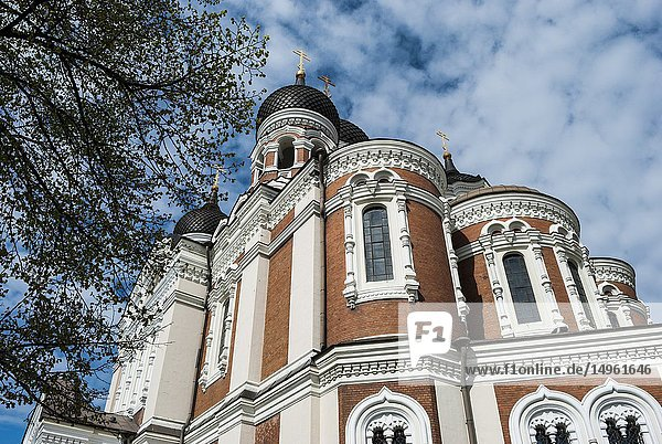 Alexander Nevsky Cathedral  Toompea Hill  Old Town  Tallinn  Estonia  Baltic States.