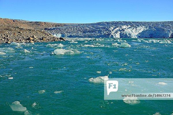 Bay and glacier of Qaleragdlit  also called Fletanes