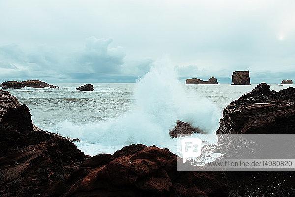 In Fels stürzende Meereswelle  Vík  Eyjafjardarsysla  Island