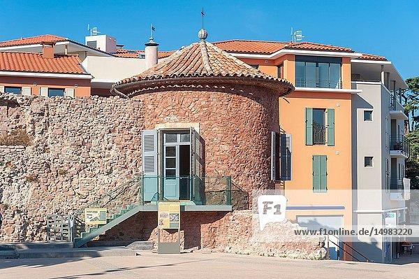 Historic city wall at Place Clemenceau  Frejus  Var  Provence-Alpes-Cote d`Azur  France  Europe.