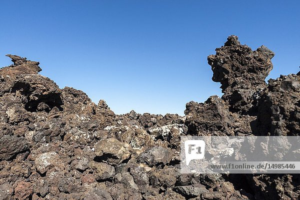 Immerse yourself in the hostile landscape of volcanic lava. Mancha Blanca,  Lanzarote. Spain.