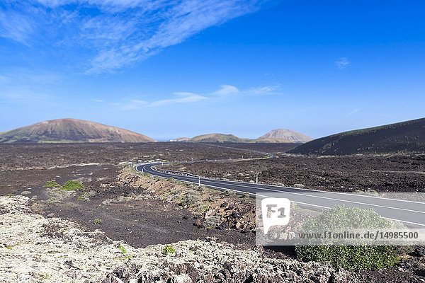 The road between the volcanic lava. La Geria  Lanzarote. Spain.