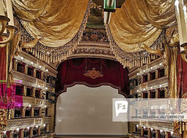 Naples Campania Italy. TheReal Teatro di San Carlo(Royal Theatre of Saint Charles)  its original name under theBourbonmonarchy but known today as simply theTeatro di San Carlo  is anopera houseinNaples  Italy. It is located adjacent to the centralPiazza del Plebiscito  and connected to theRoyal Palace. It is the oldest continuously active venue for public opera in the world  opening in 1737.