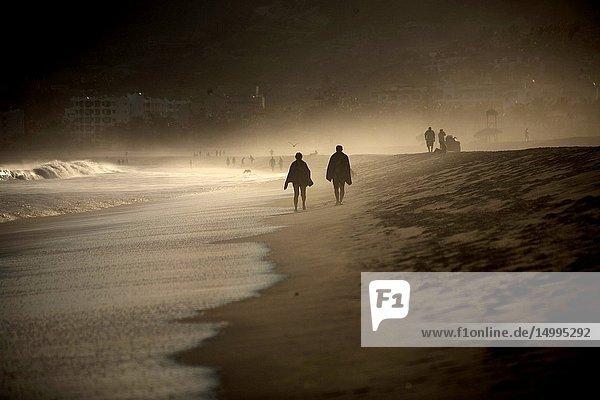 A couple walks in a beach in San Jose del Cabo  Baja California  Mexico.