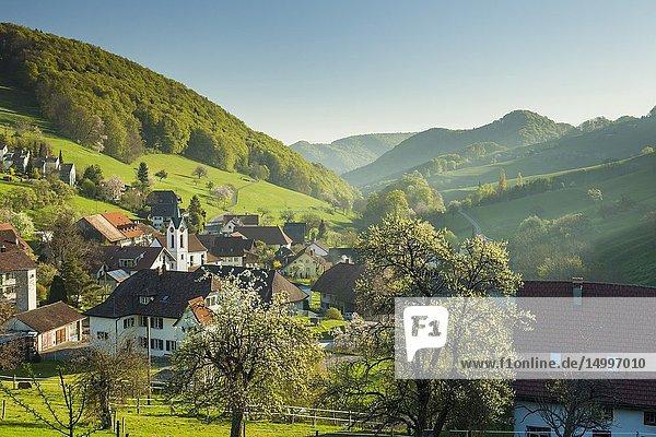 Spring morning in Wisen village  canton Solothurn  Switzerland.