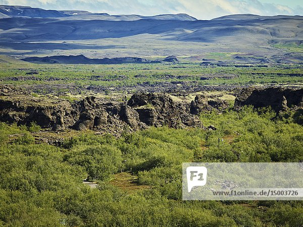 Dimmuborgir -area of unusually shaped lava fields  cave and volcanic rock formations  east of Myvatn  Iceland.