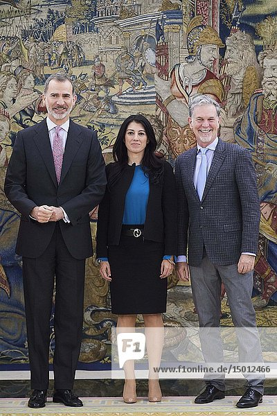 King Felipe VI of Spain attends an audience with Mr. Reed Hastings  Netflix CEO at Palacio de la Zarzuela on April 5  2019 in Madrid  Spain