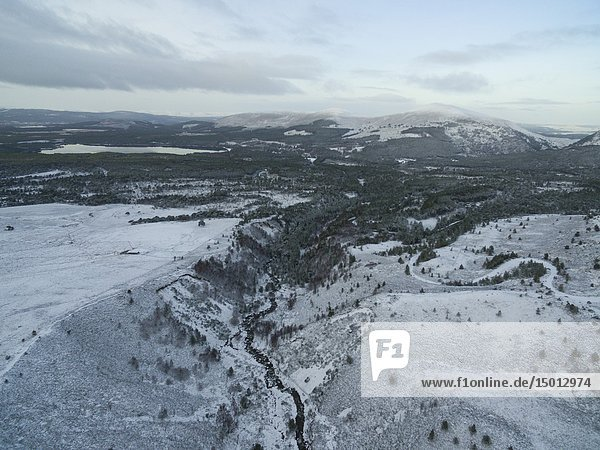 AVIEMORE  SCOTLAND  UK - 17 Jan 2019 - Aerial snowy landscape showing the snowy mountains of the Cairngorms near Loch Morlich with the Rosiemurchus forest also visible near Aviemore Scotland UK - Picture by Atlas Photo Archive/Jonathan Mitchell.