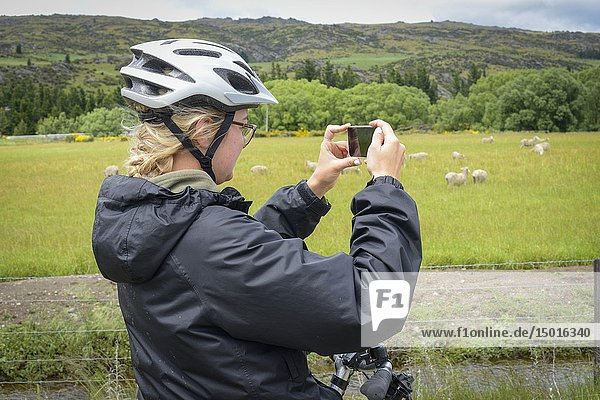 A woman takes a photo on the Central Otago Rail Trail  South Island  New Zealand.