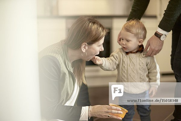 Baby toddler child feeding mother in kitchen at home  in Cottbus  Brandenburg  Germany.