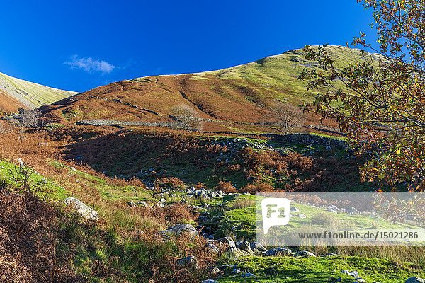 Dovedale valley  Lake District National Park  Cumbria  England  UK  Europe.