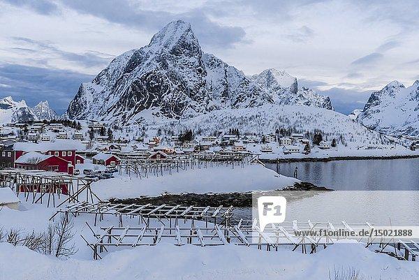 Fish drying racks  the fishing village of Reine  on Moskenseoya Island in the Lofoten Islands  Arctic  Northern Norway.