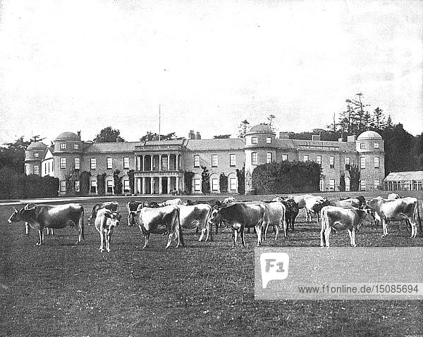 Goodwood  Hampshire  1894. Creator: Unknown.