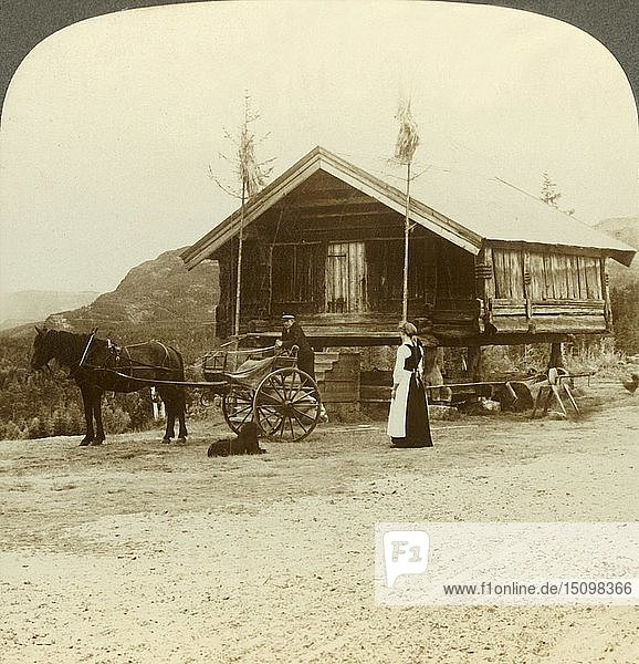 'Waiting for passengers on the road near Bolkesjo  Norway'  c1905. Creator: Unknown.