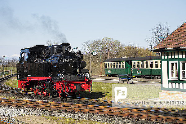 Narrow Gauge Railway  'Rasender Roland'  Putbus  Ruegen  Germany