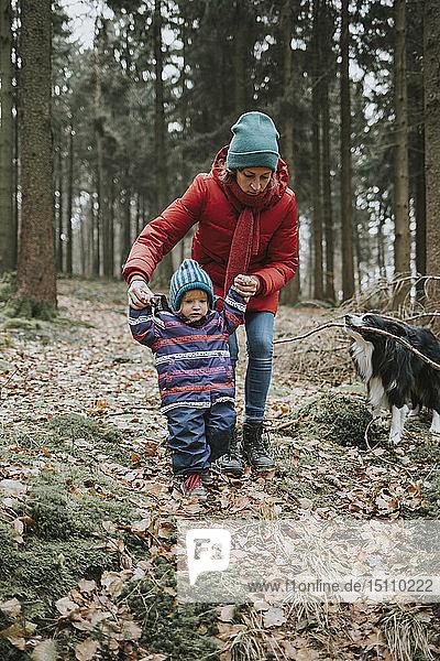 Mutter mit kleiner Tochter und Border Collie im Herbstwald