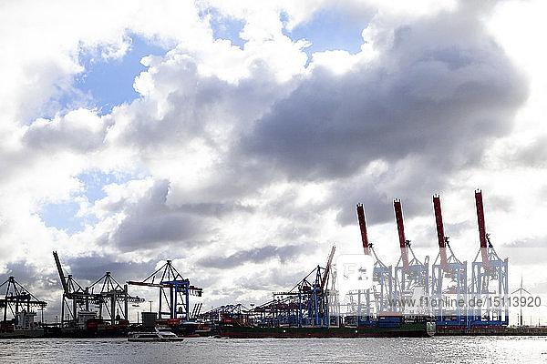 Hafenkräne im Hamburger Hafen  Hamburg  Deutschland