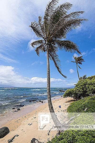 Hawaii,  Insel Molokai,  Zwanzig-Meilen-Strand