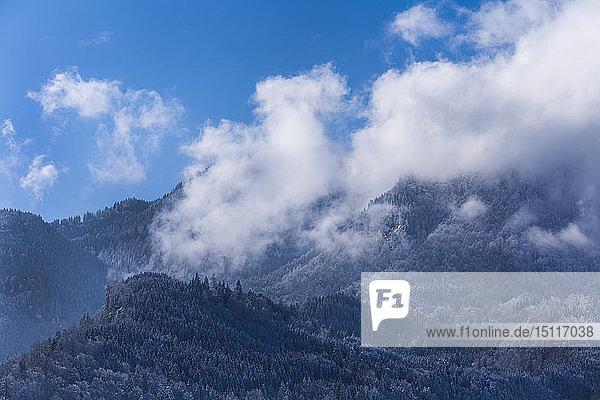 Alpen im Winter  Eschenlohe  Oberbayern  Deutschland