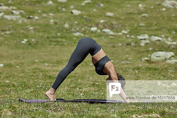 Young woman doing yoga on meadow  downward facing dog position