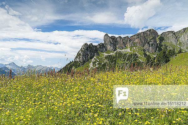 Österreich  Tirol  Maurach  Rofangebirge