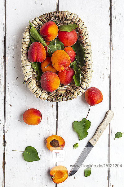 Apricots in basket  knife on white wood