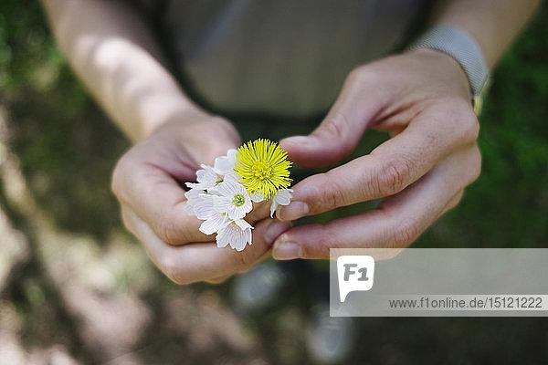 Nahaufnahme einer Frau  die Blumen hält