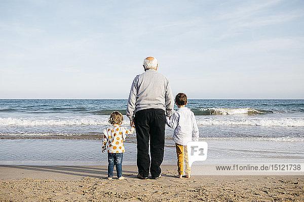 Rückenansicht des Großvaters  der mit seinen Enkeln Hand in Hand am Strand steht und das Meer beobachtet