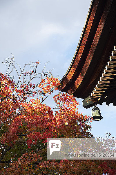 Bright orange acer leaves next to a bell and the wooden roof of the Hida Kakubun-ji Pagoda in Takayama  Japan  Asia