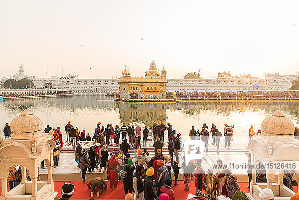 Crowds gather to pray and watch the sunset at The Golden Temple  Amritsar  Punjab  India  Asia