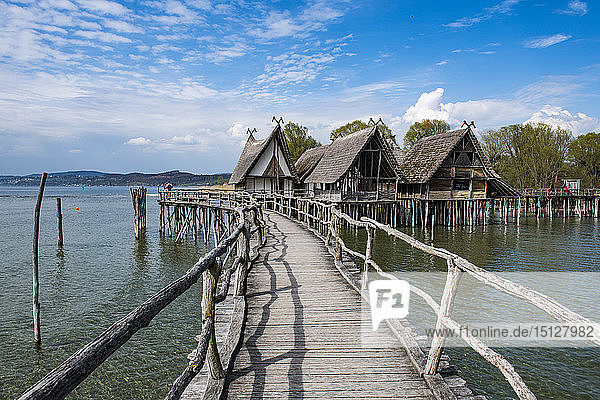 The archaeological open-air museum Stilt houses (Pfahlbaumuseum Unteruhldingen)  UNESCO World Heritage Site  on Lake Constance  Unteruhldingen  Germany  Europe