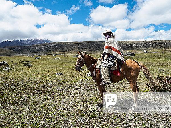 Indigenous man on a horse in high paramo landscape  Cotopaxi National Park  Andes mountains  Ecuador  South America