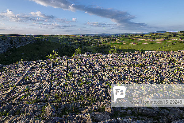 Evening light shows dramatic surface of the famous Limestone Pavement at Malham Cove in the Yorkshire Dales National Park  Yorkshire  England  United Kingdom  Europe