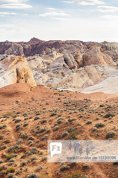 Valley of Fire State Park  Nevada  United States of America  North America