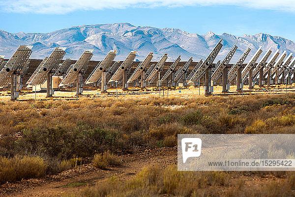 Reihen von Sonnenkollektoren in der Landschaft  Seitenansicht  Kapstadt  Westkap  Südafrika