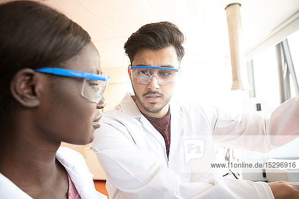 Young female and male scientists having discussion in laboratory