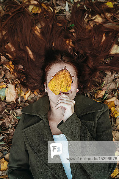 Young woman with long red hair lying amongst autumn leaves and covering face with autumn leaf  overhead portrait