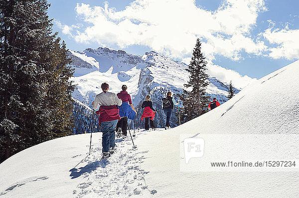 Reifes Paar und Töchter beim Schneeschuhwandern in schneebedeckter Berglandschaft  Rückansicht  Steiermark  Tirol  Österreich