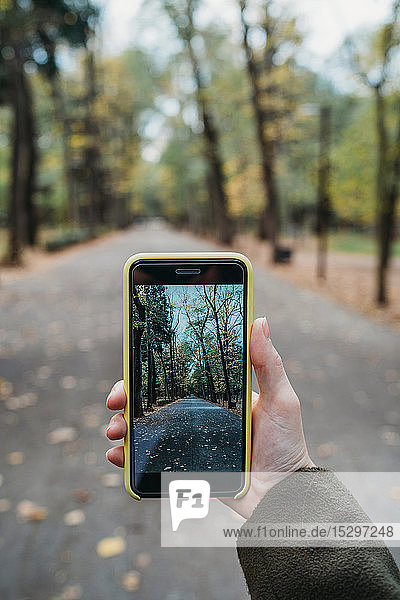 Young woman photographing tree lined autumn park on smartphone  personal perspective  Florence  Tuscany  Italy