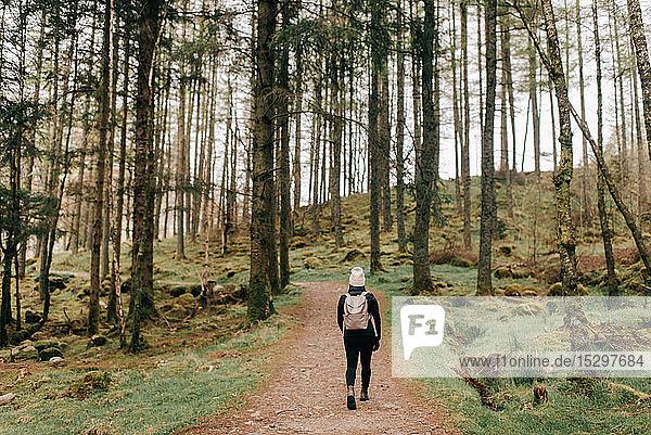 Trekker walking in Trossachs National Park  Canada