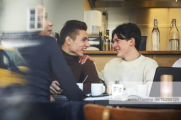 Smiling teenage male friends sitting at table in restaurant