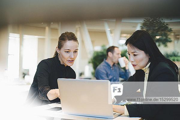 Zuversichtliche Geschäftsfrau diskutiert während eines Treffens in der Cafeteria am Laptop mit einer Tischkollegin
