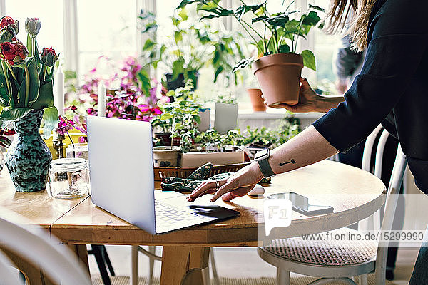 Midsection of woman using laptop while holding potted plant at home