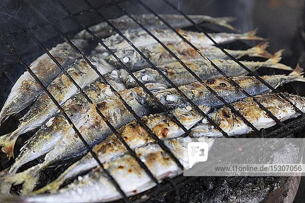 Ganze Sardinen auf dem Barbecue-Grill