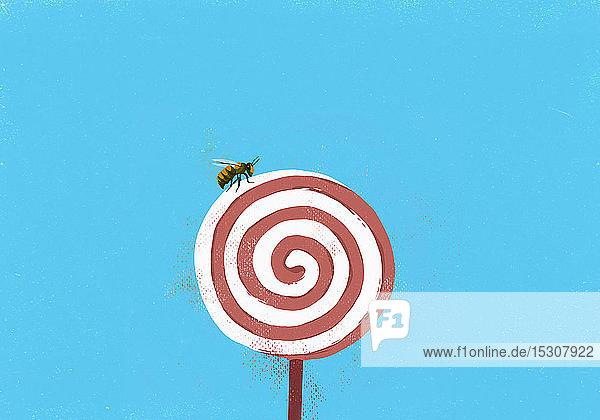 Fliege auf Windrad-Lollipop