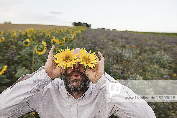 Spielerischer Mann  der seine Augen mit Sonnenblumen auf einem Feld bedeckt